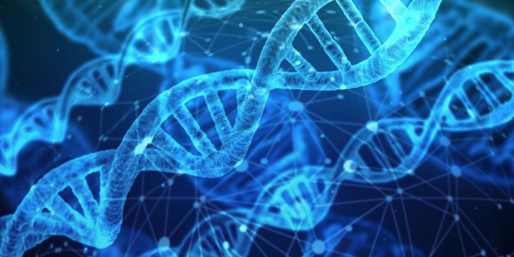 test génétique